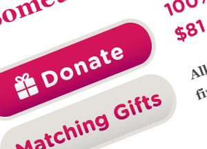 screenshot of donate button