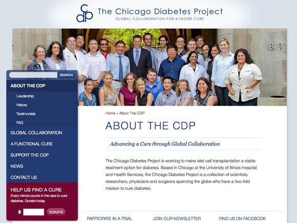 Chicago Diabetes Project About Us Page