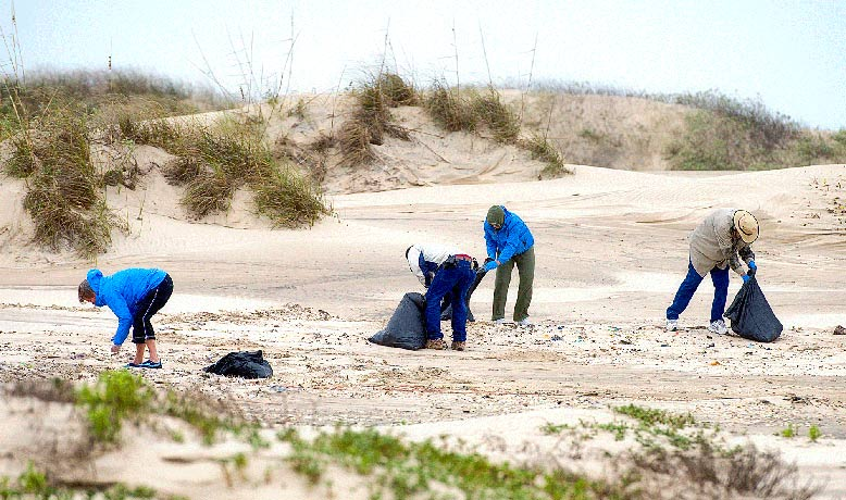 Great Lakes beach cleanup