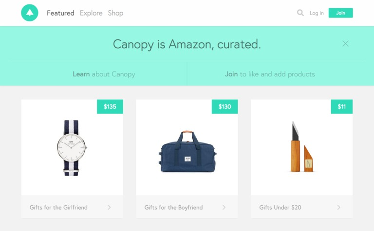 screenshot of elevator pitch on canopy homepage