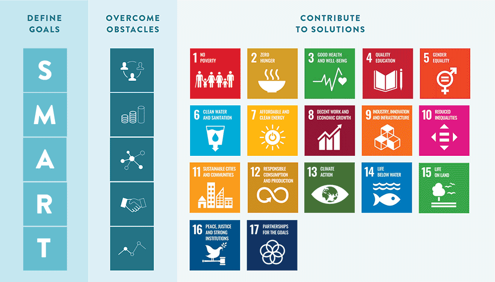 An infographic showing how some organizations address the SDGs.