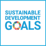 Learn How Organizations Address the SDGs in Our New Report