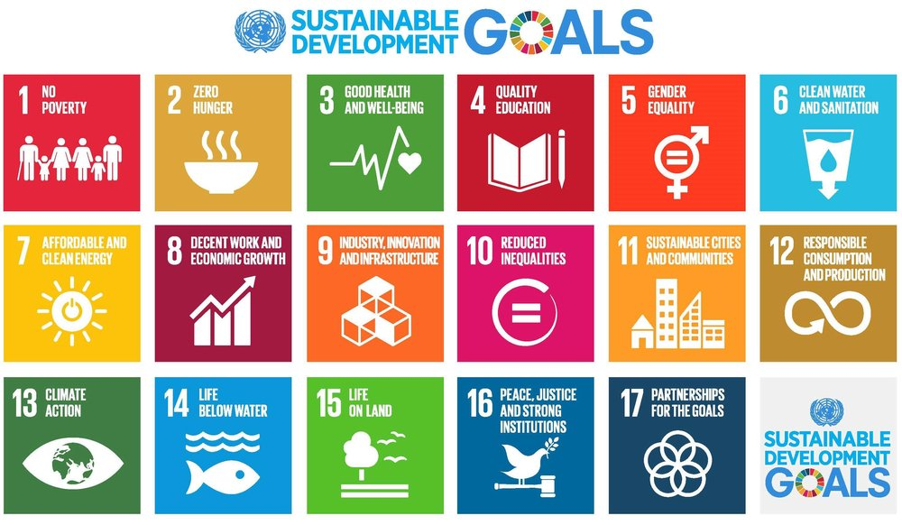The United Nations 17 Sustainable Development Goals (SDGs)