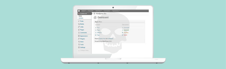 wordpress hack icon